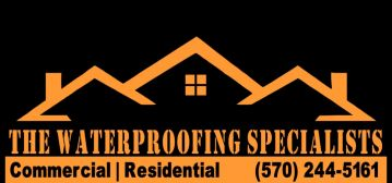 Basement Waterproofing Professional